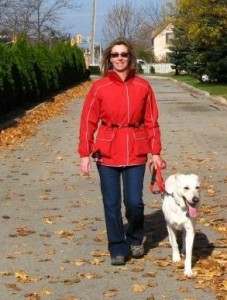 Enjoying a fall walk, being prepared! Chella & Trooper - LGD in St. Catharines, Ontario-Canada